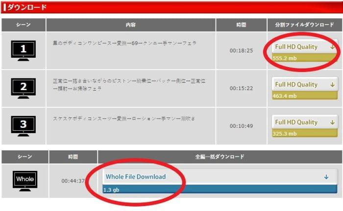 JAPANSKAダウンロード画面015